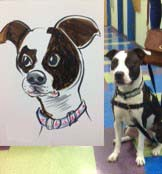 Pet Caricature Artist Ellen