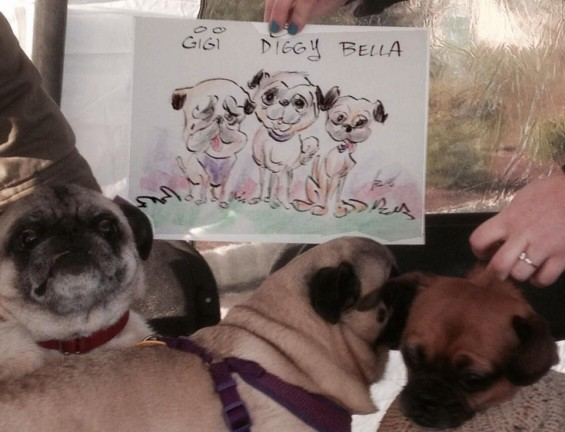 Pittsburgh Party Pet Caricatures